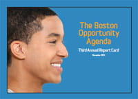 Click for a PDF of the BOA Report Card 2013